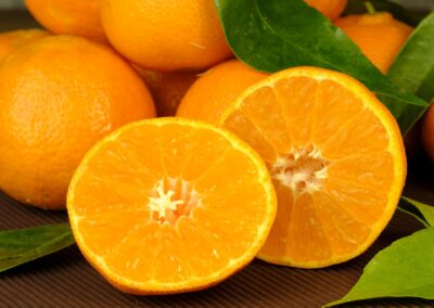 NEUM i berba mandarina
